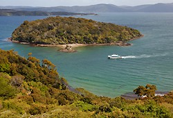 Paterson Inlet Cruises (including Ulva Island)