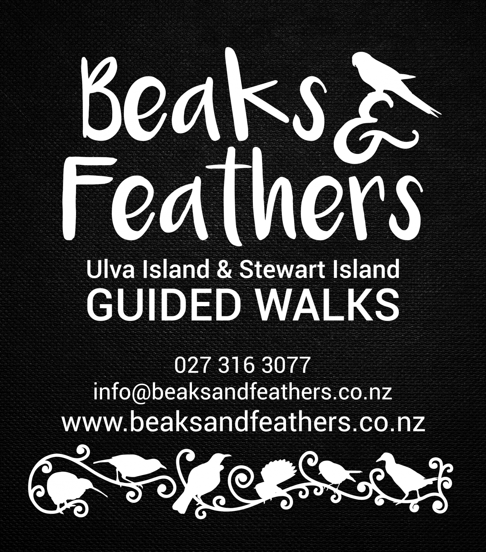 Beaks and Feathers logo