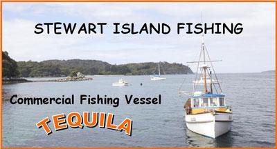 Stewart Island Fishing logo