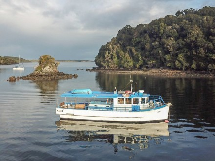 Evening Cruise on the Ranui